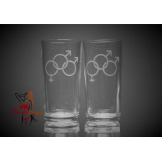 Hi Ball Glasses x2 - Bi Male Bi Male Female Symbol